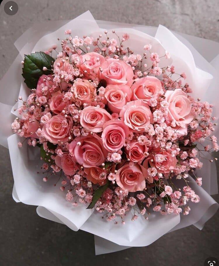 Bloom Plus Bouquet