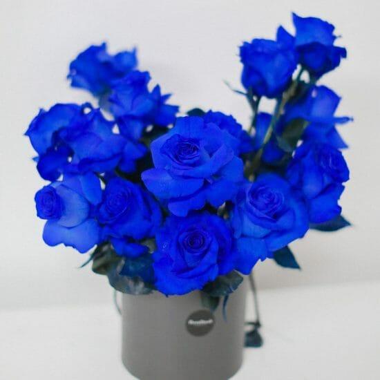 blue roses toronto