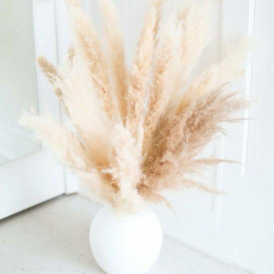 Pampas Vase Arrangement Home Decor